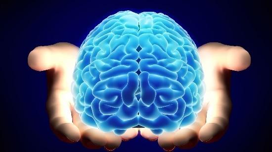 脳と水分.jpg